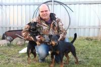 Собаки для охоты!