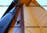 Покраска деревянных домов, конструкций, интерьеров