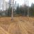 Расчистка участка от деревьев и кустарника - Изображение 5