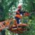 Расчистка участка от деревьев и кустарника - Изображение 3