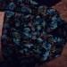 Продам недорого два женских пиджака